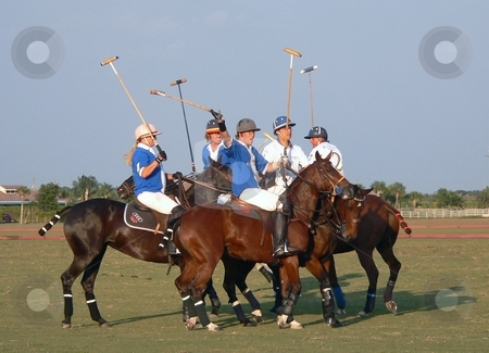 Wellington Polo stock photo, Polo match in Wellington, FL 2007 by Perry Correll