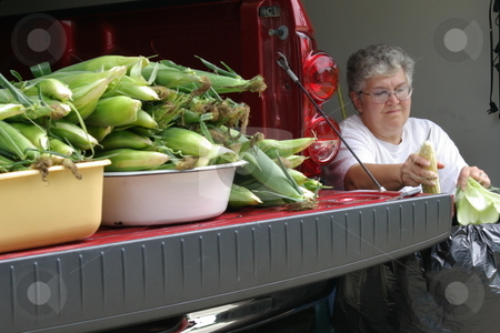 Woman cleaning sweet corn stock photo, An Iowa woman cleans (shucks) the leaves off an ear of fresh sweet corn while sitting in her garage. More ears of sweet corn wait, their turn on the end of her pickup, by Dennis Thomsen