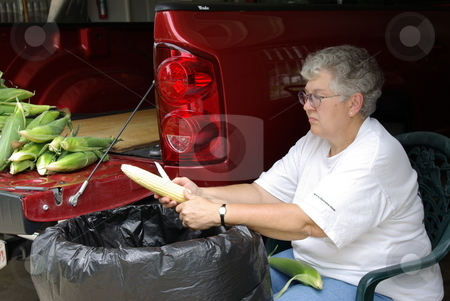 Woman cleaning sweet corn stock photo, An Iowa woman cleans (shucks) the leaves off an ear of fresh sweet corn while sitting in her garage. More ears of sweet corn wait their turn on the tail end of her pickup. by Dennis Thomsen