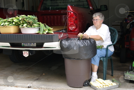 Woman cleans sweet corn stock photo, An Iowa woman cleans (shucks) the leaves off an ear of fresh sweet corn while sitting in her garage.  More ears of sweet corn wait their turn on the tail end of her pickup. by Dennis Thomsen