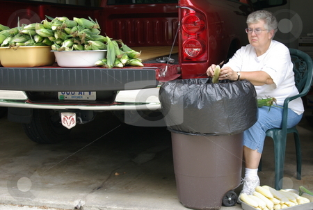 Woman cleans sweet corn stock photo, An Iowa woman cleans (shucks) the leaves off an ear of fresh sweet corn while sitting in her garage.  More ears of sweetcorn wait their turn on the tail end of her pickup. by Dennis Thomsen