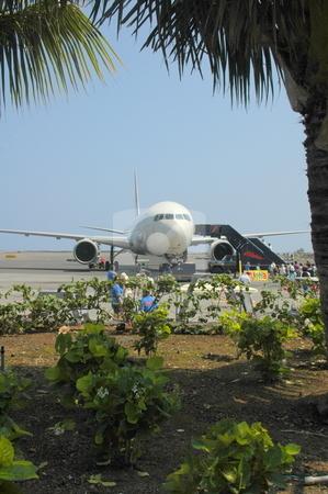 Japan Airlines Boarding Passengers stock photo, Passengers are boarding a JAL flight in Kona, Hawaii. by Janie Mertz