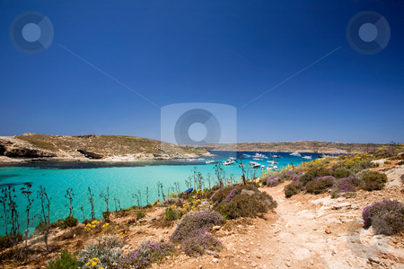 Gozo Blue Lagoon stock photo, Comino island and the blue lagoon by Tyler Olson