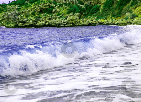 Seaside green and blue stock photo, Green coast and blue wave, adriatic sea by Julija Sapic