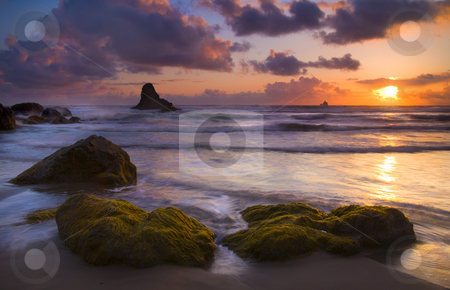 Golden Tides stock photo, Seaweed cast upon some boulders along Indian beach and illuminated by the light of the setting Sun by Mike Dawson