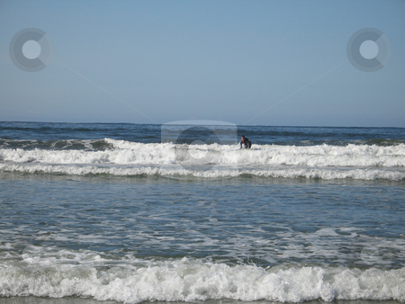 Surfer stock photo, surfer on it's board in the ocean by Mbudley Mbudley
