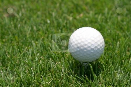 Golf Ball stock photo, Close up of a golf ball on green lawn. by Henrik Lehnerer