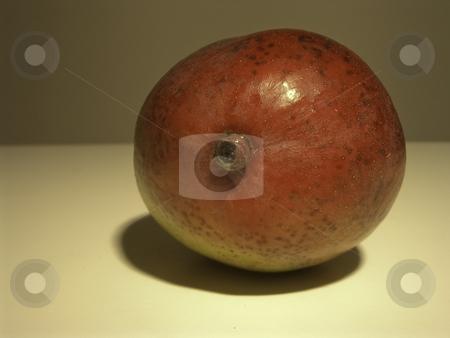 Mango-002 stock photo, Mango by Creative Shield