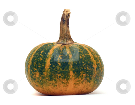 Fancy pumpkin stock photo, Fancy pumpkin isolated over white by Natalia Macheda