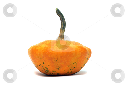Fancy pumpkin stock photo, Fancy orange pumpkin isolated over white by Natalia Macheda