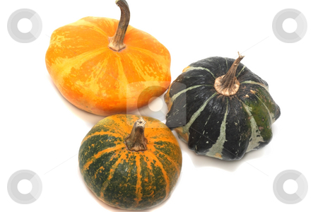 Three fancy pumpkins stock photo, Three fancy pumpkins isolated over white by Natalia Macheda