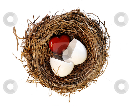 Birthday stock photo, Red heart hatching from white egg in nest by Julija Sapic