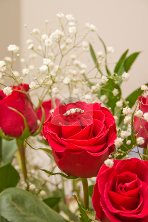Ring In The Rose stock photo, Bouquet of red roses for someone special by Johan Knelsen