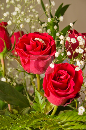 Red Rose Ring stock photo, Bouquet of red roses for someone special by Johan Knelsen
