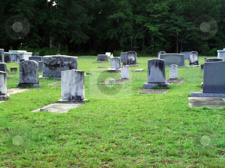 Cemetery stock photo, The backs of some headstones in a cemetary. by Stacy Cauley