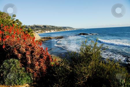 Laguna Beach Scenic stock photo,  by Timothy OLeary
