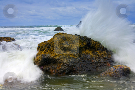 Too Close for Comfort stock photo, The Rocky coast of Ecola Beach State Park. After picking my way around the headlands to this spot on a boulder I realzed that I was just a bit too close and got a bit wet getting this shot. by Mike Dawson