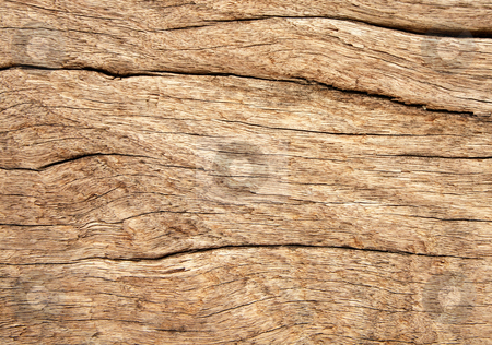 Weathered wood grain texture close up background. stock photo, Weathered wood grain texture close up background. by Stephen Rees