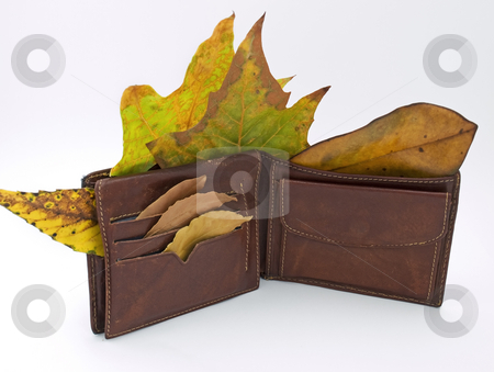 Wallet in the Autumn stock photo, Metaphor about man without job after economy crises and his wallet in the fall. by Sinisa Botas