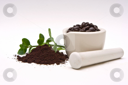 Gourmet Coffee and grind stock photo, A mortar with freshly roasted coffee beans and a pile of coffee grind with some leaves in the back on a white background by Paul Hakimata