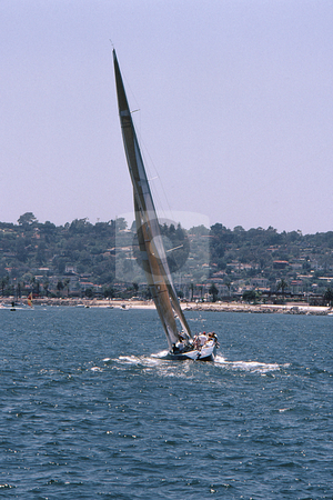Sailing in the bay stock photo, Sailing in the bay at full sail and leaned over by Joseph Ligori