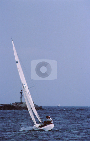 Sail in harbor stock photo, Sail craft leaned over catching full wind in harbor by Joseph Ligori