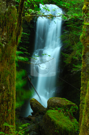 Dreamland of fairy tales stock photo, A magical set created by framing the waterfall slightly out-of-focus between the sharply focussed tree trunks. by Nilanjan Bhattacharya