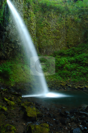 Pony tail falls stock photo, Upper horse-tail falls in the Columbia gorge. by Nilanjan Bhattacharya