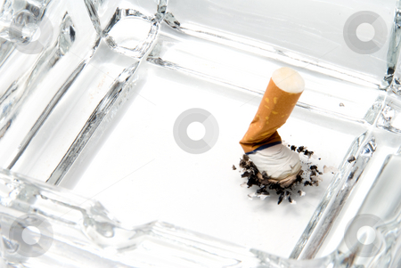 Cigarette Butt stock photo, A discarded cigarette butt in an ashtray. by Robert Byron