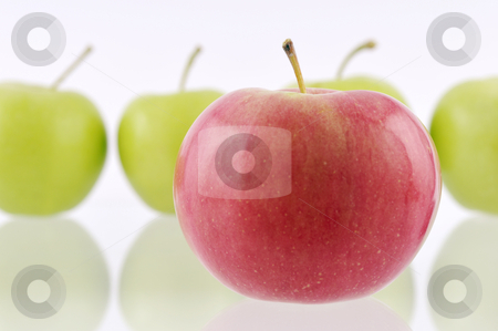Apples stock photo, One red apple in front with green apples in the foreground by Csaba Zsarnowszky