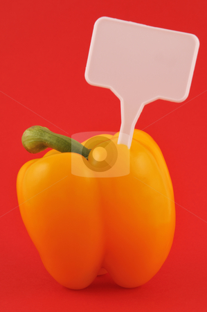 Yellow paprika stock photo, Yellow paprika with price tag against red backgound by Csaba Zsarnowszky