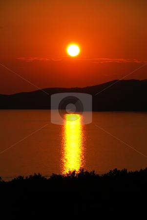 Orange sunset stock photo, Orange sunset over sea behind black tree silhouettes by Julija Sapic