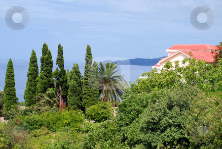 House on seaside stock photo, House with red tiled roof in montenegro by Julija Sapic