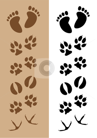 Footprints / Tracks stock vector clipart, Vector illustration of s different sets of footprints in two default colors: brown on light brown and black on white by Inge Schepers