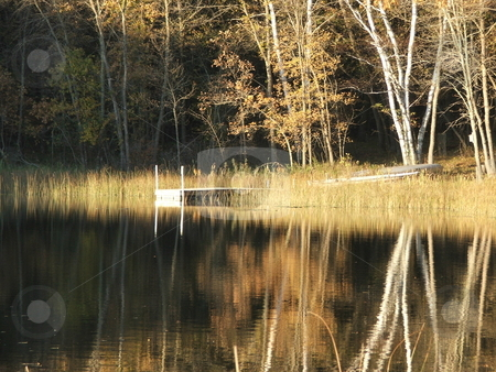 Fall On Golden Pond stock photo, This secluded, quiet, setting on Kimble Lake, near the Whitefish Chain in north central Minnesota, transports visitors to the fall days of their youth with the golden, yellow, colors and reflected birch trees. by Dennis Thomsen