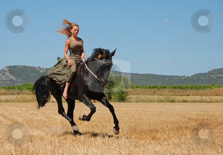 Riding girl stock photo, Young woman and her black stallion in a field in summer by Bonzami Emmanuelle