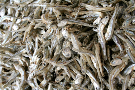 Dried fish stock photo, Dried preserved salted fish, a traditional asian food by Kheng Guan Toh