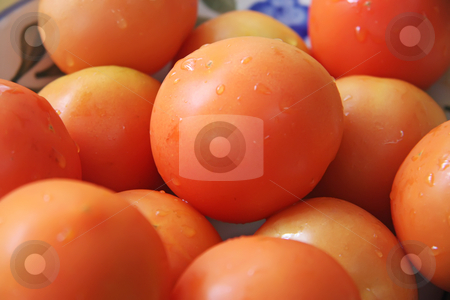 Whole tomatoes stock photo, Fresh whole round raw red tomatoes arranged in bowl by Kheng Guan Toh