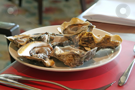 Fresh oysters stock photo, Raw fresh oysters in half shell restaurant setting by Kheng Guan Toh