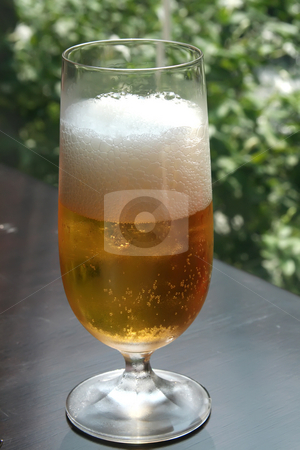 Glass of beer stock photo, A glass of beer outdoor setting greenery by Kheng Guan Toh