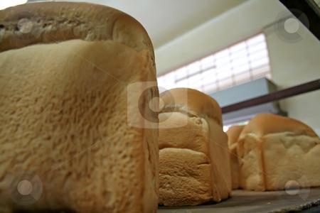 Bakery bread stock photo, Rows of bread loaves in racks in a bakery by Kheng Guan Toh