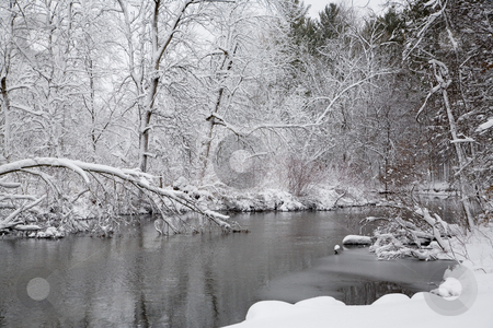 Snowcapes stock photo, Photos were taken the morning after a typical Michigan winter storm. by Ramses Racelis