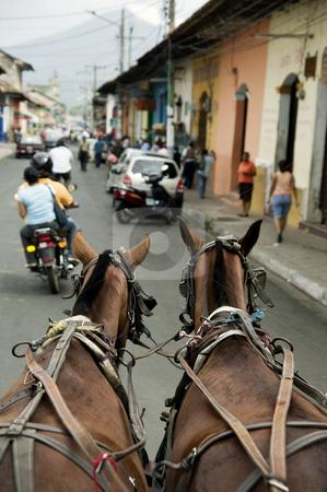 Granada Nicaragua Street Scene stock photo, Horses on the street in downtown Granada Nicaragua by Scott Griessel