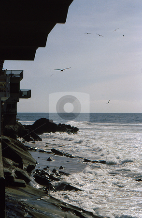 Coastal Community View stock photo, Coastal community view looking up the coast with flocking gulls and waves by Joseph Ligori