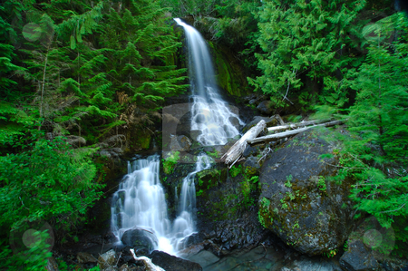 Garden of Eden stock photo, A silky smooth waterfall in the forest of rainier national park by Nilanjan Bhattacharya