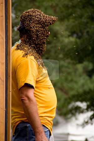 Beekeeper stock photo, A bee keeper covered in a swarm of honey bees. by Robert Byron