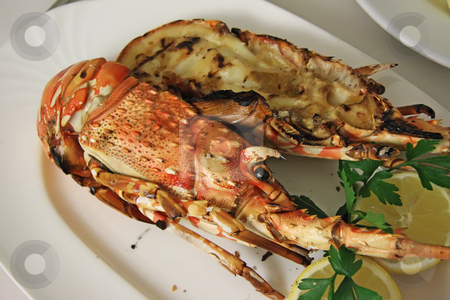Grilled lobster stock photo, Grilled pacific lobster split in shell with garnish by Kheng Guan Toh