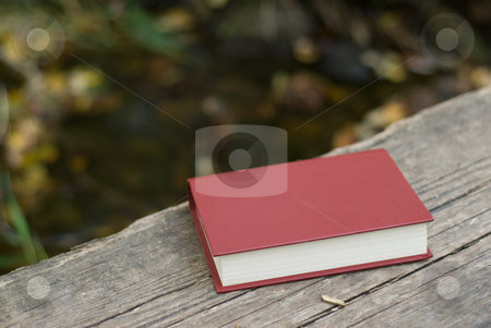 Lost Book stock photo, A lost bible left on a wooden bridge by Richard Nelson