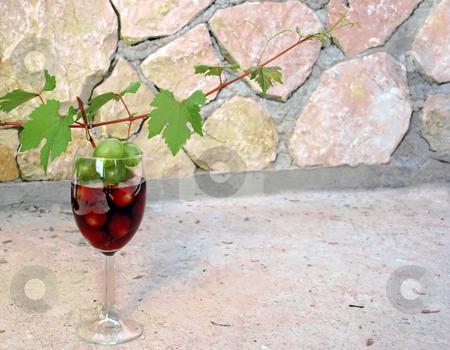 Vine shoot over wine glass stock photo, Green young vine shoot with red wine glass over stone fence by Julija Sapic