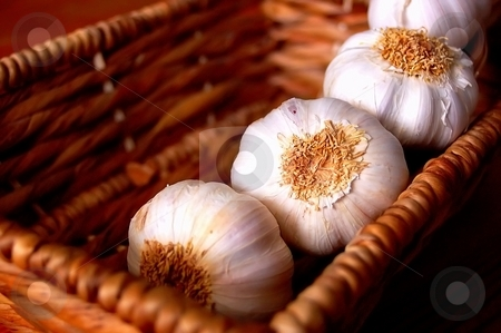 Garlic stock photo, Garlic is used in many dishes, giving a fine taste and is healthy by Lars Kastilan
